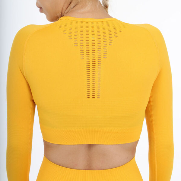 Women Seamless Workout Outfits - Leggings and Long Sleeve Top Yellow